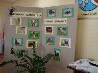 Rośliny i zwierzęta a zdrowie człowieka_9