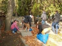 Wolontariusze Kopernika sprzątają groby._1