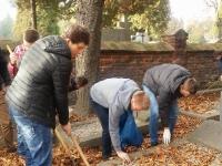 Wolontariusze Kopernika sprzątają groby._5
