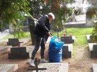 Wolontariusze Kopernika sprzątają groby._6